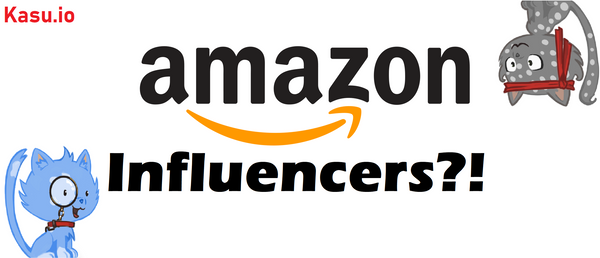 How much can Amazon Influencers make?